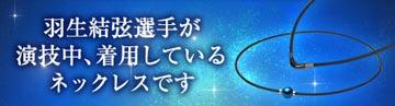 RAKUWAネック メタックス (チョッパーモデル)